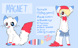 Magnet reference sheet 5.0 by Magnet-Crayon