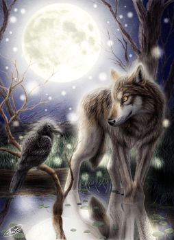 Wolf, Crow by SheltieWolf