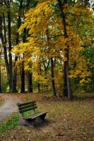 Park Bench 2 by JohnSchoenbeck