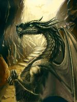 bookcover dragon by taibu