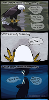 Reflecting on reflections by namu-the-orca