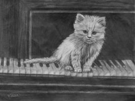 Kitten on the Keys Study by RandyAinsworth