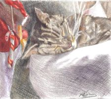 Harley, The Christmas Eve Dream by Anita-Sanderson