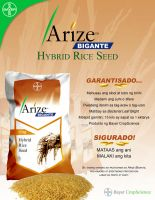 Poster Study: Bayer Arize by ice-works