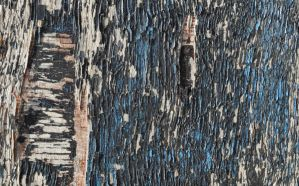 painted wood texture three by density-stock