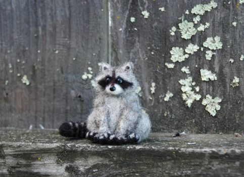 Mini Needle Felted Baby Raccoon by amber-rose-creations