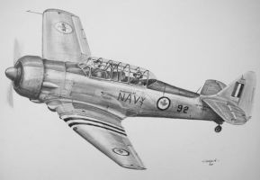 North American T6G by NorthumbriaArt