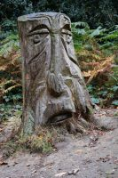 DSC 0075 01 Groombridge Place Greenman by wintersmagicstock