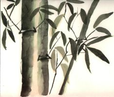 Bamboo by Bec0530