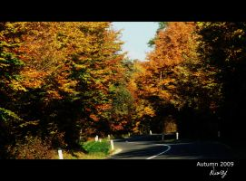 Autumn road by niwaj