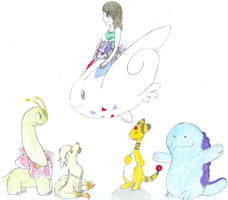 My Completed Soul Silver Team by gir-is-me
