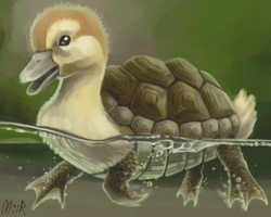 Turtle Duckling by miirshroom