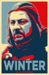 Ned Stark by LiquidSoulDesign
