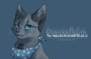 Finch-wing on Tumblr by Finchwing