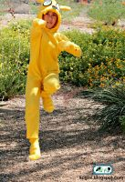 Adventure Time Jake Costume 3 by SugiAi