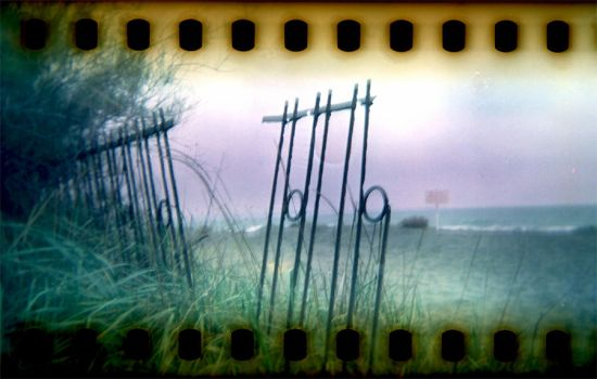 Holga_35mm_165 by xxlogre
