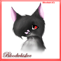 Bloodwhisker - realistic by Bloodsiri
