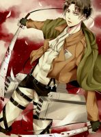 Rivaille by hossico