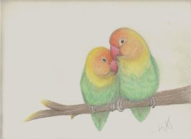 Lovebirds by wolvenwillow