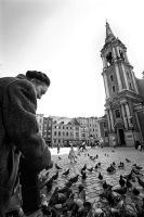 The Old Lady and The Pigeons by nurulanga