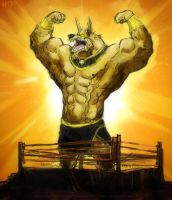 King of the Ring by aokamidu