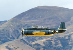 Grumman Avenger TBM-3E by ARC-Photographic