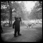 The Bear - June 2011 by pearwood