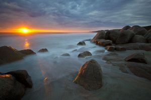 The golden glow by Bassonvz