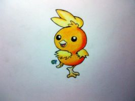 #255 - Torchic by GTS257-CT