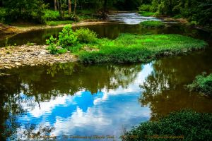 00-TheParklandsOfFloydsFork-Aug-2015-SAM 2542-2-WP by darkmoonphoto
