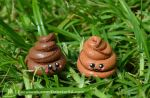 It's a POO in the grass by Dabstar