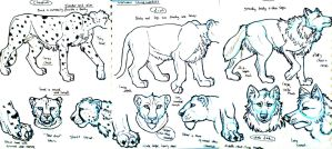 Wolf, cheetah, lion studies by Gashu-Monsata