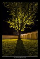 Night at the Churchyard by AndreasResch