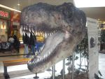Tyrannosaurus in a supermarket (head) by SophieEkard