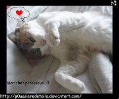 mon chat dort by p0ussiereDetoile