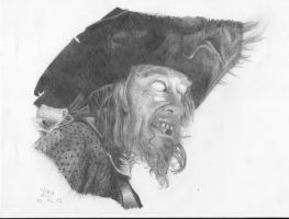 Hector Barbossa by Fernoll