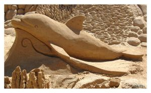Dolphin Sand Art by dungas