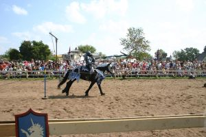 Jousting - Charge 3 by Furaha015