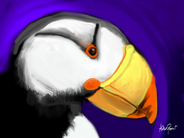 Horned Puffin by altergromit