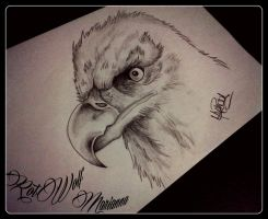 Eagle by rotwolf93
