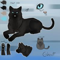 Ghost reference Sheet's by StormAndFreedom
