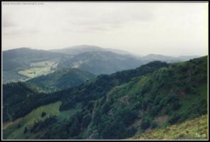 From the Black Forest by Miarath
