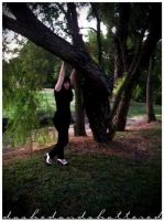 I hang from trees. by dashedandshattered