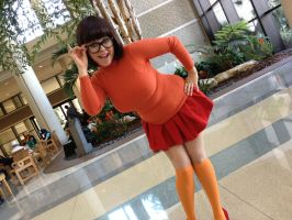 Megacon 2013: Velma by ChriSpaiNess