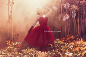 _Queen of hearts. by Bloddroppe