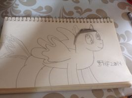 The Many Faces of JHF2014 Part 1: MLP by JuriHanFan2014