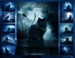 .:The Black Cat Calendar:. by moroka323