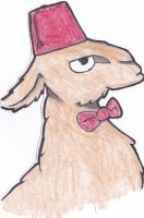 11th Doctor Llama by Boxpet