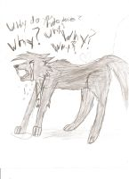 Why? Why? Why? by MetalWolpy