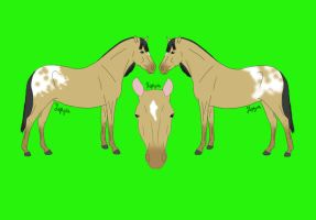 FergusonStables Design by crazykate1